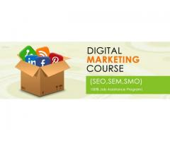 Real Time Live Projects Digital Marketing Training