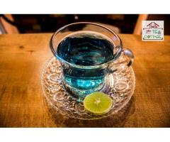 Blue Exotic Tea ---  The Tea Cottage