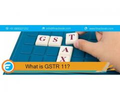 What is GSTR 11?
